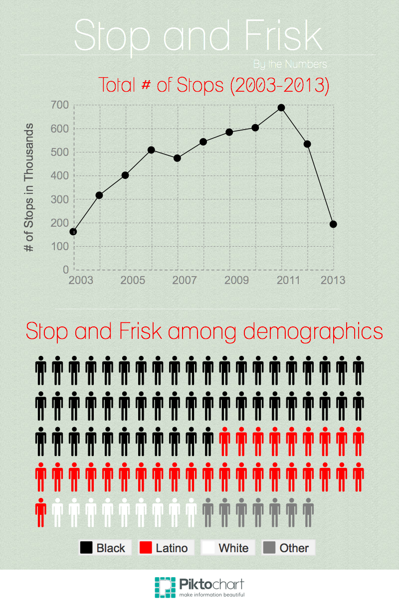 Stop and Frisk Statistics