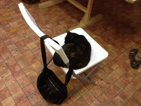 The workshop cat!