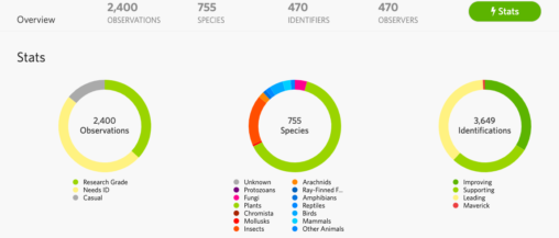 Image of Macaulay Remote BioBlitz stats with three circles showing 2440 observations, 755 species, and 3649 observation identifications
