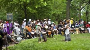 Prospect Park - Drummer Grove