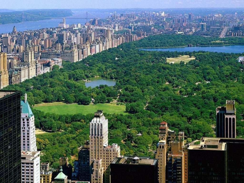 Image result for Central Park new york