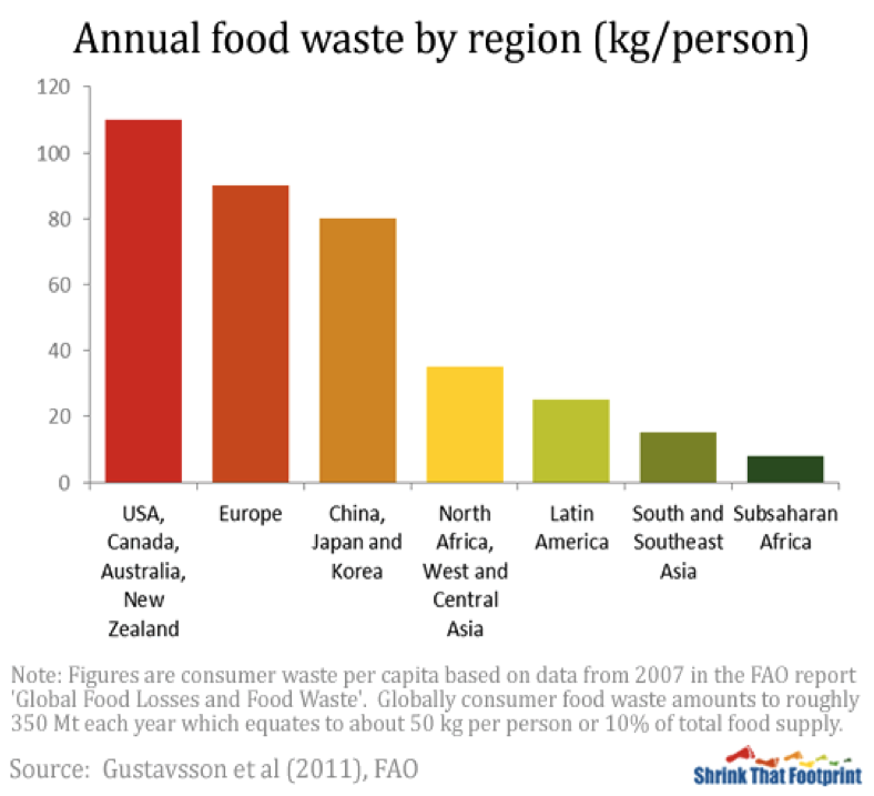 Impacts Food Waste Who Needs It Anyway
