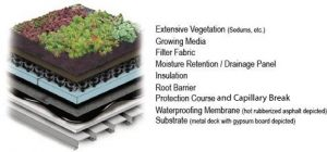 layers-of-a-green-roof-2