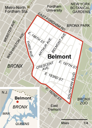THE PEOPLING OF NEW YORK MHC  Lehman  Demographic of Belmont