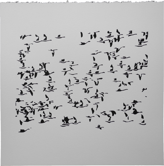 Charles Campbell - Flock/Flight