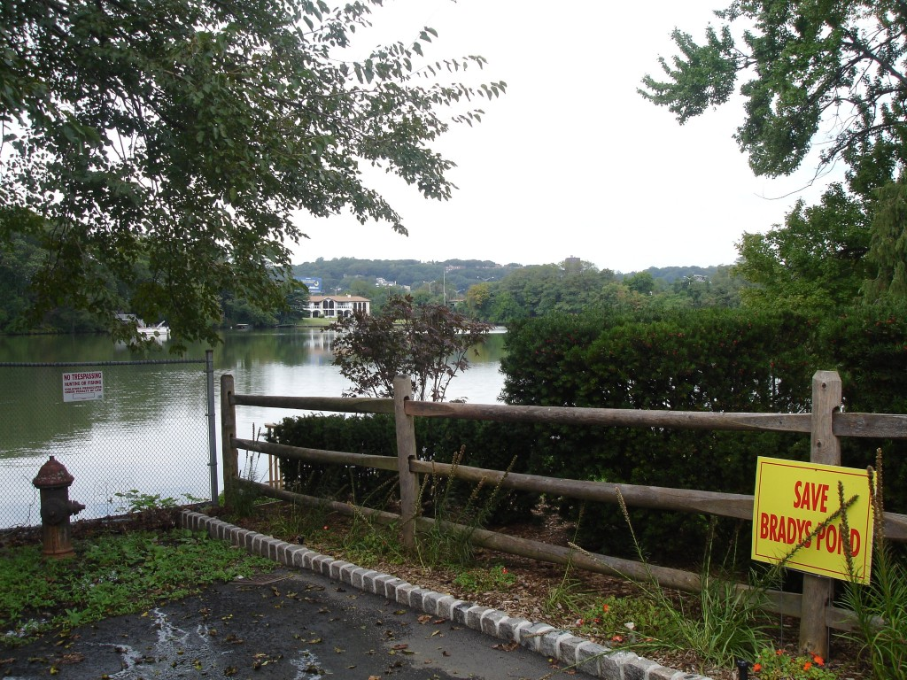 http://macaulay.cuny.edu/gallery/Snapshot-2011/Save-Brady-s-Pond